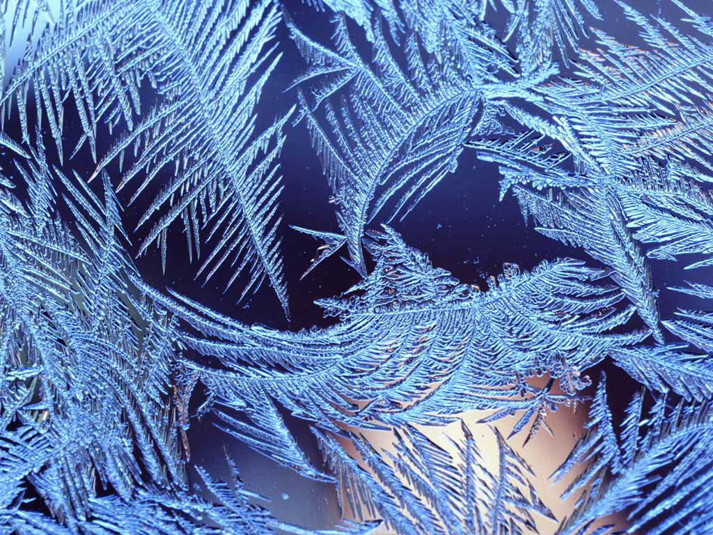 лето,зима,осень  или  вена?