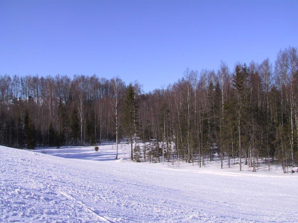 Заставка Зимы На Рабочий Стол