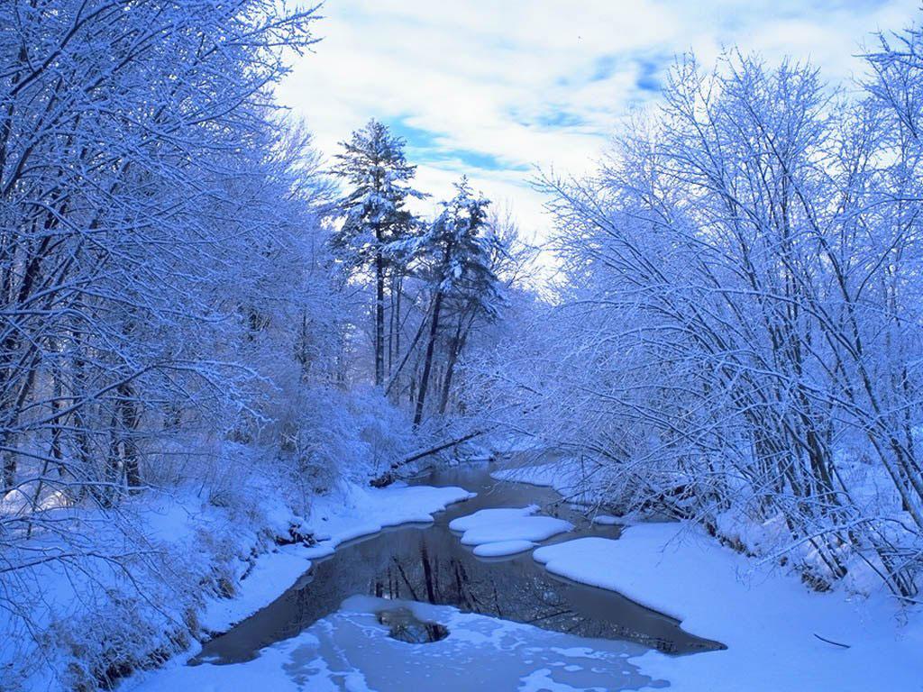 Зимние обои для рабочего стола зима