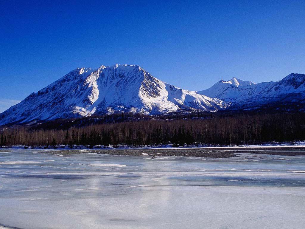 фотографии зимы