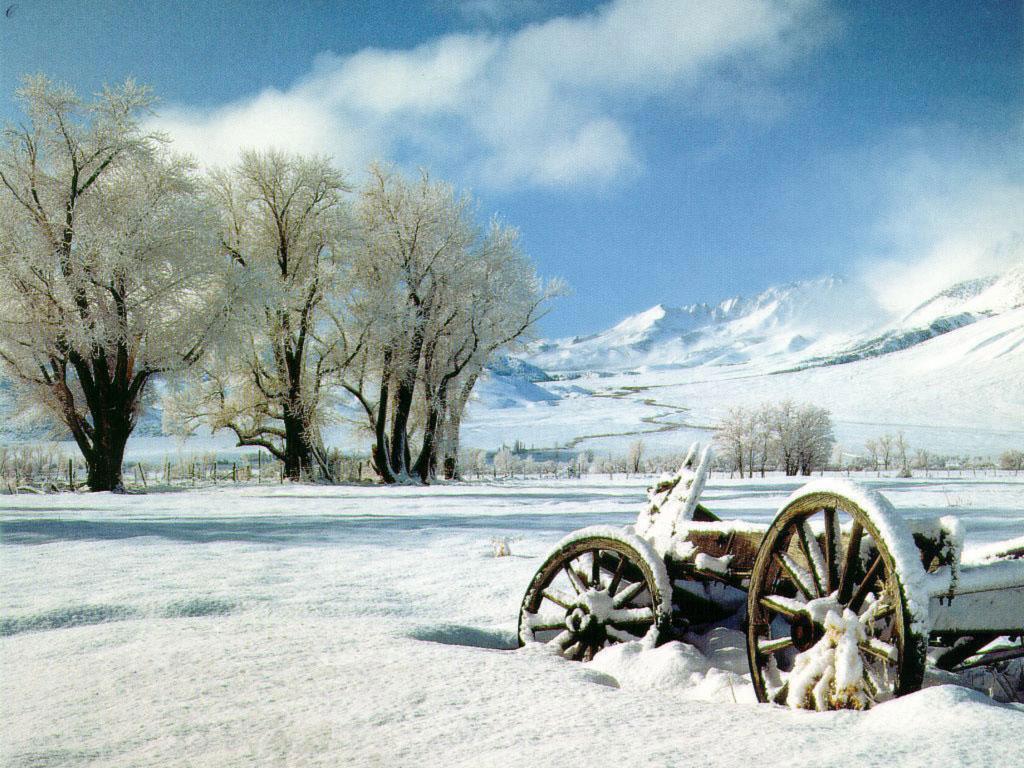фото зима, зимние обои