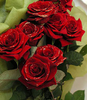 розы ко дню святого валентина