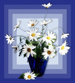 поздравительная открытка на день святого валентина ромашки